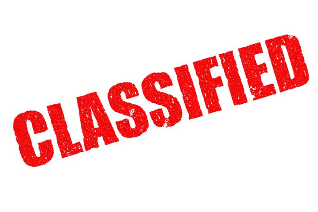 D. Trump potwierdza stwierdzenia Q na temat paniki w Wielkiej Brytanii i Władzy Realnej w związku z odtajnieniem dokumentów FISA
